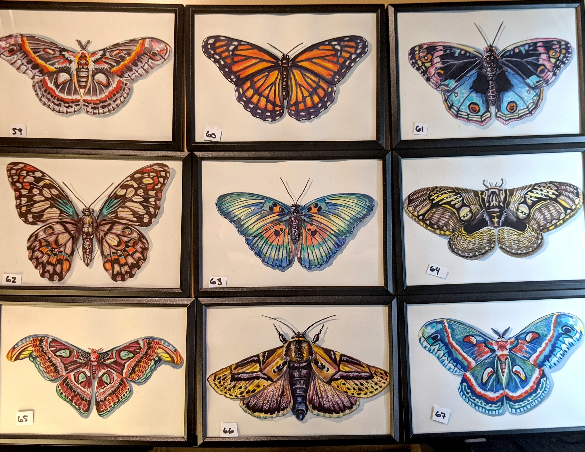 Small Insects 59 – 67 By Martha Iserman (Petals And Wings Exhibition)
