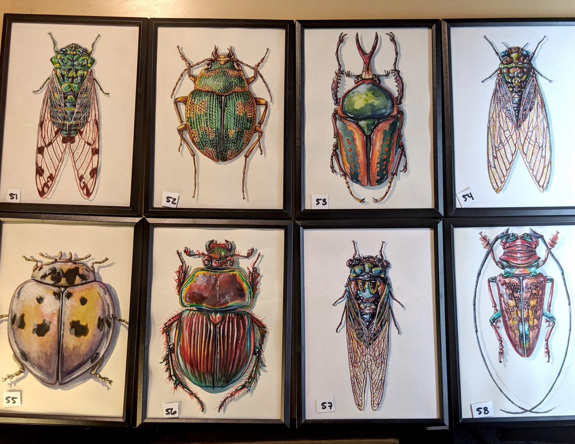 Small Insects 51 – 58 By Martha Iserman (Petals And Wings Exhibition)