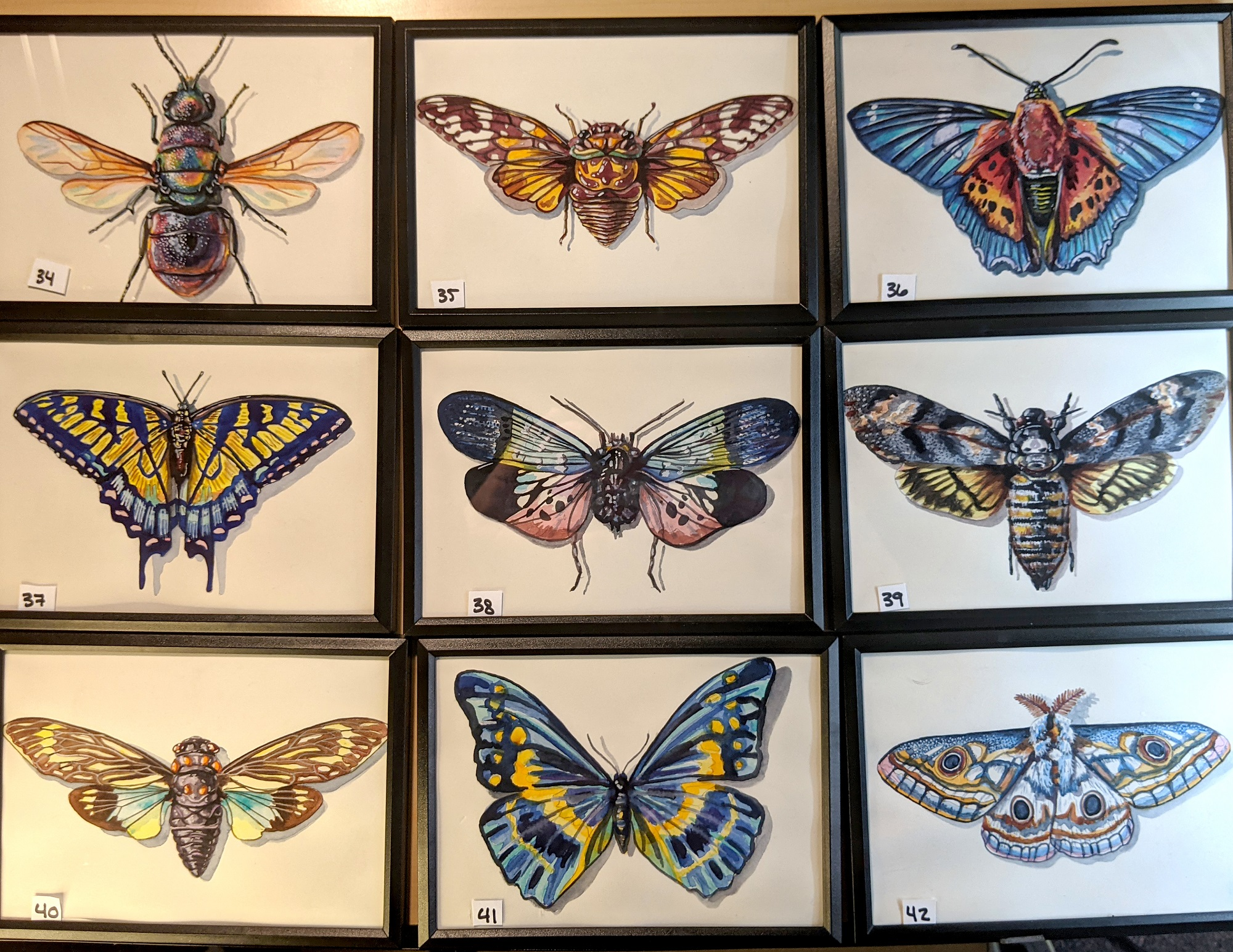 Small Insects 34 – 42 By Martha Iserman (Petals And Wings Exhibition)