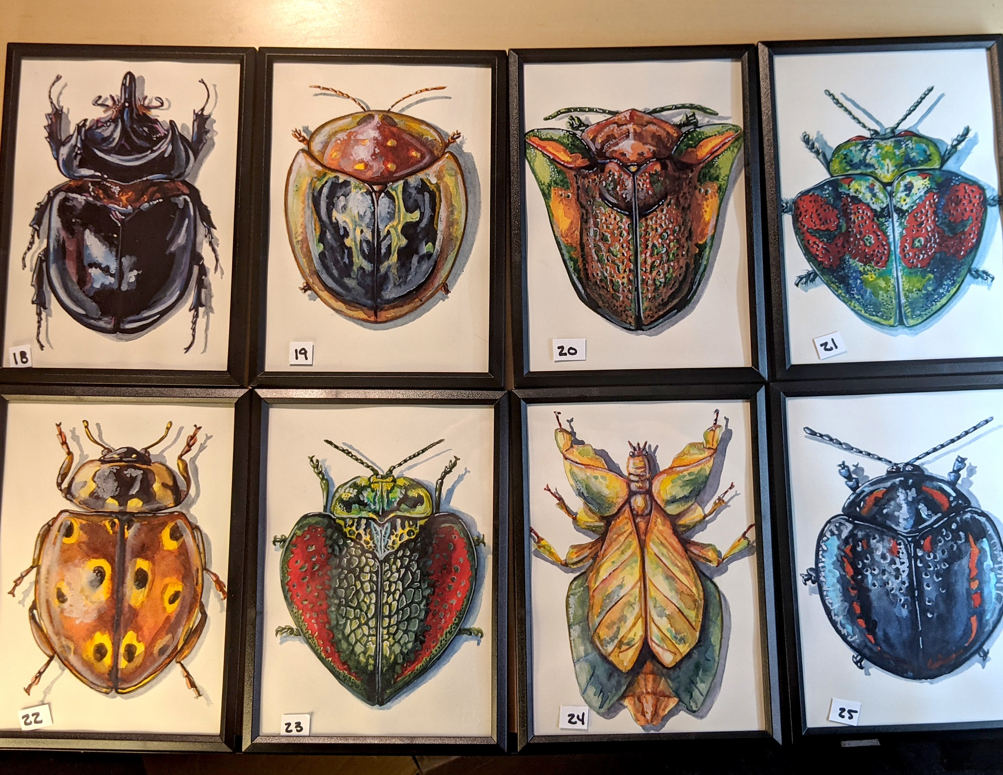 Small Insects 18 – 25 By Martha Iserman (Petals And Wings Exhibition)