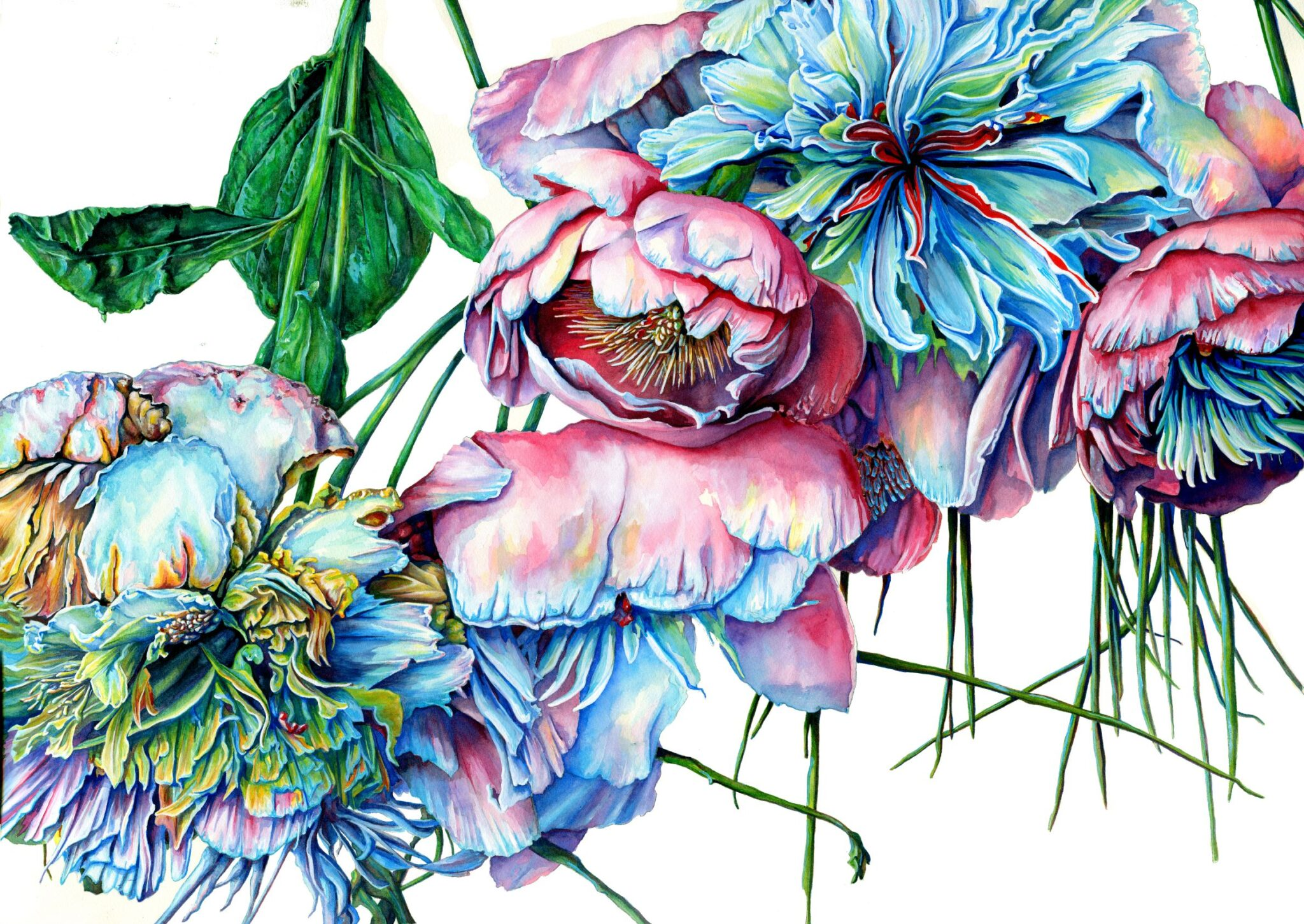 Peonies By Martha Iserman (Petals And Wings Exhibition)