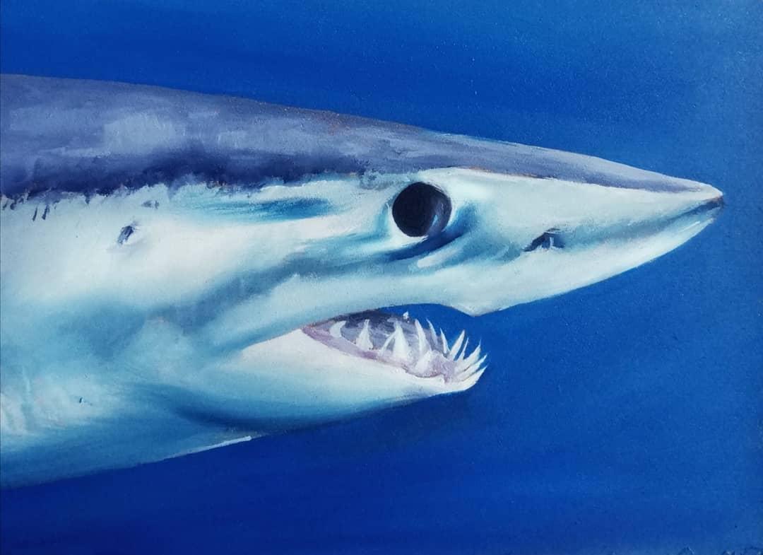 The Mako Shark Painting