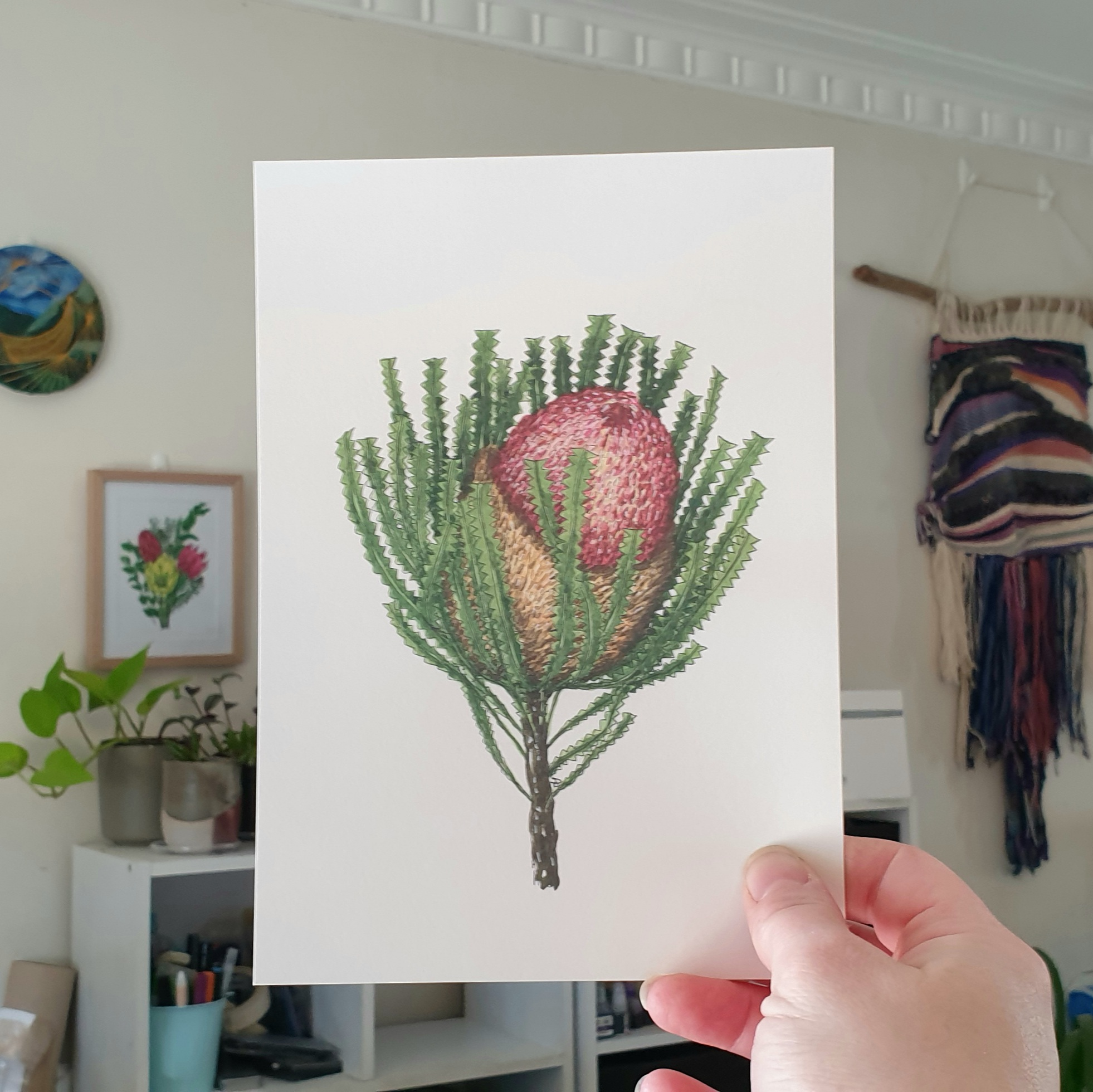 'Banksia 3' A4 Art Print Botanical Collection Sarah Sheldon Art By A Vibrant Nest