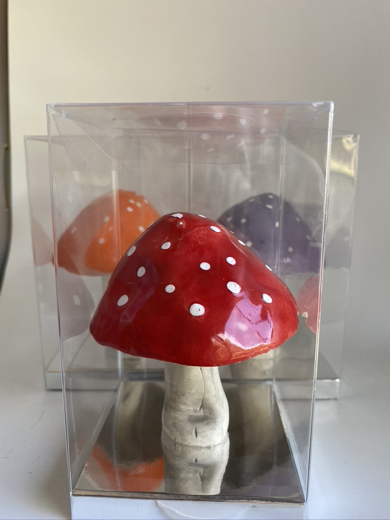 Ceramic Mushrooms By Iggiruss Designs
