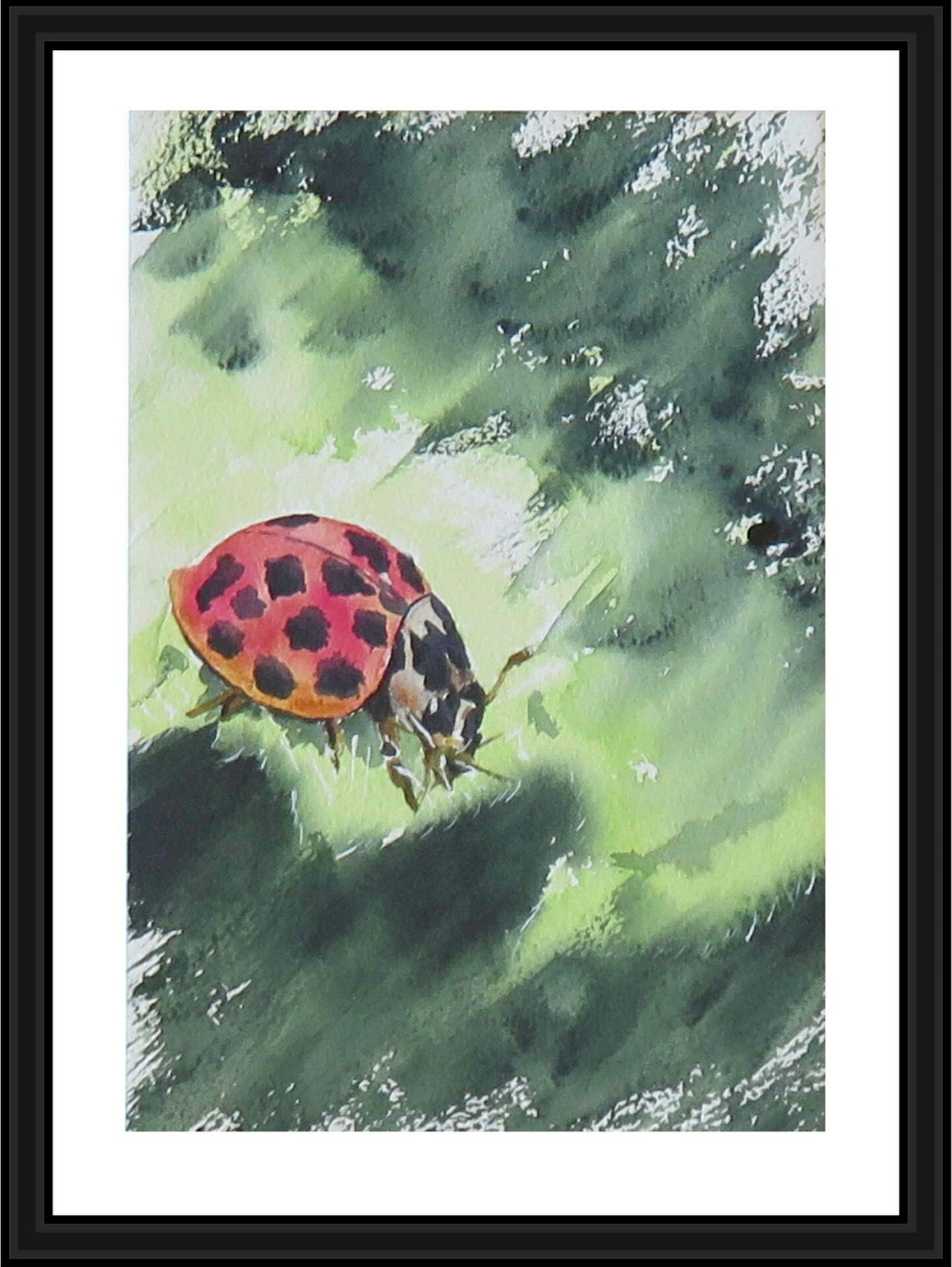 Lilleth Ladybird By Carin Lavery Showing In Works On Paper