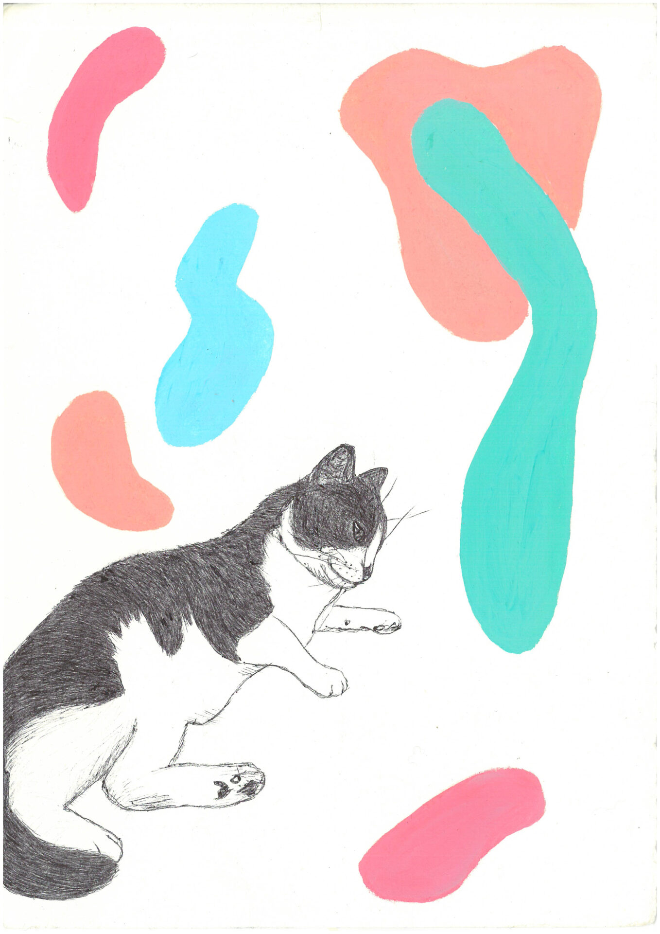 Cat I By Evelyn Challinor Showing In Works On Paper