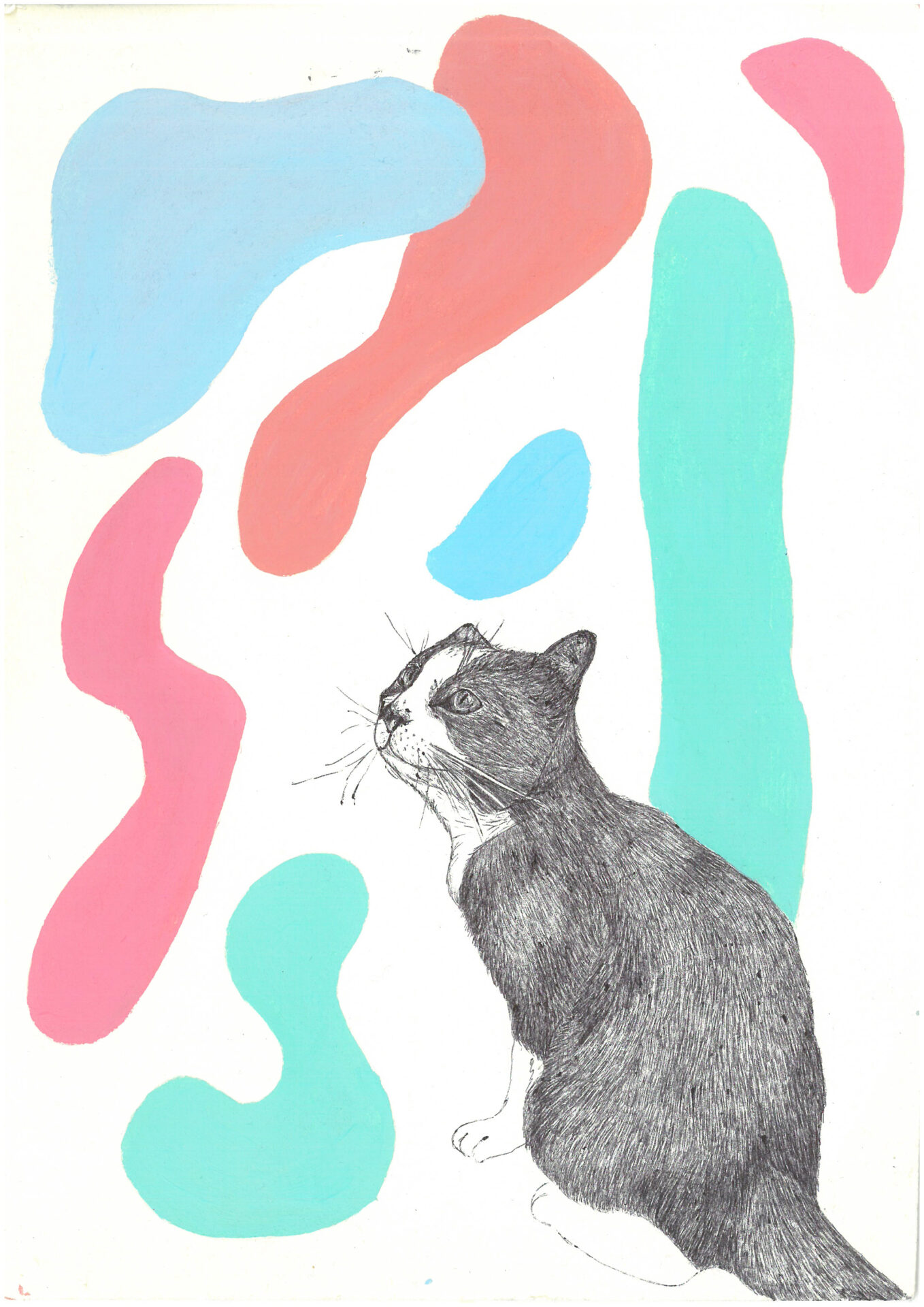 Cat II By Evelyn Challinor Showing In Works On Paper
