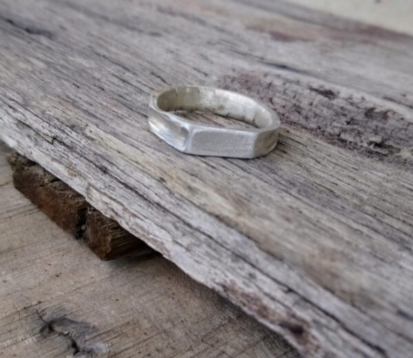 larger-size-silver-ring-features-flat-face-side-facets-by-field-studies-by-Janinemary