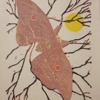 helena-moth-6-colour-reduction-linoprint Kaz 646761
