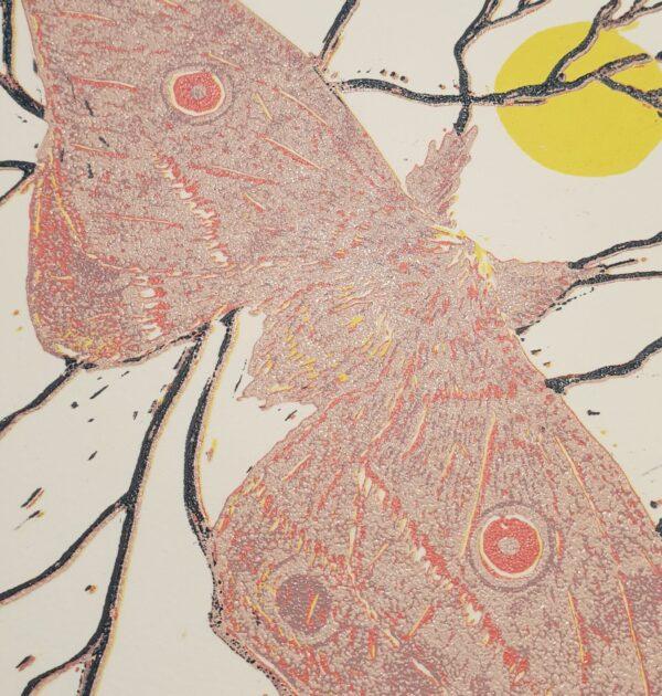 helena-moth-6-colour-reduction-linoprint Kaz 266577